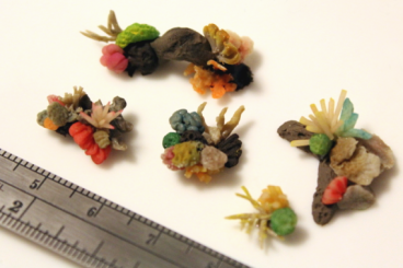 A close shot of various corals made of polymer clay. The corals are brightly colored- pink, red orange, green, turquoise, yellow- and they're arranged on rocks and contain fine detail. A measuring ruler nearby shows their scale of approximately 1 cm long